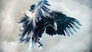 hawk_wings_by_gawrifort-d5tk8e4
