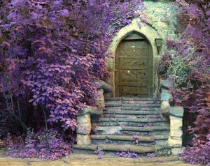 art-and-classic-door-with-flower-decor